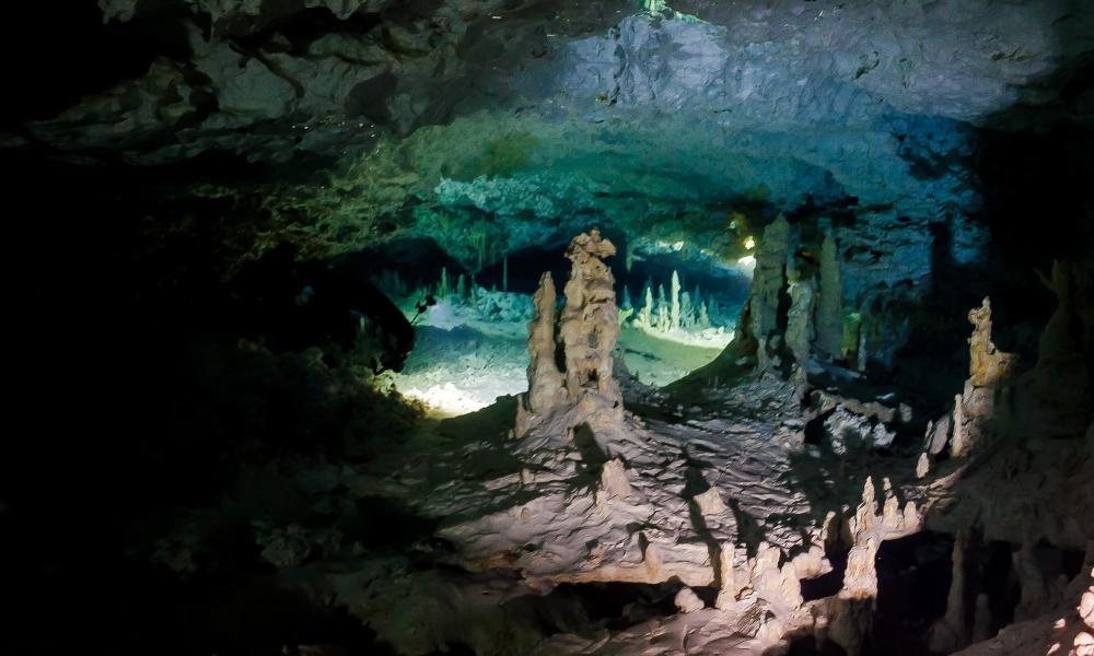 Tulum Cavern Diving Cenote